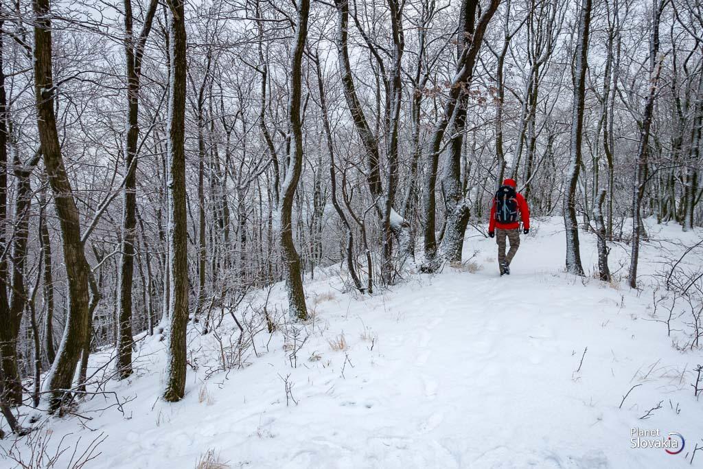 9a17a278f Malá Baňa - nevysoký vrch v Rači so samoobslužným bufetom ...